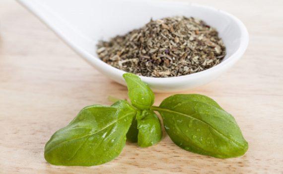 Basilic séché vs. Basilic frais