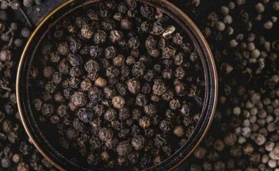 Qu'est-ce que le poivre noir ?