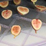 Comment faire sécher des figues ?
