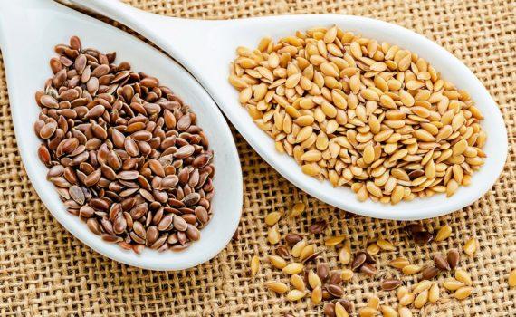 Graines de lin brunes vs. Graines de lin dorées